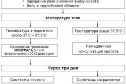 Алгоритм лечения цистита
