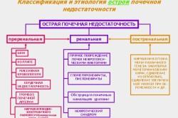 Классификация почечной недостаточности
